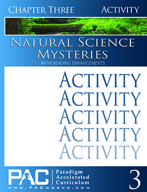 Natural Science Mysteries Chapter 3 Activities from Paradigm Accelerated Curriculum