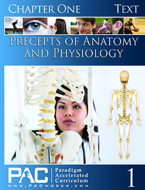 Precepts of Anatomy and Physiology Chapter 1 Text from Paradigm Accelerated Curriculum