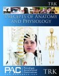 Precepts of Anatomy and Physiology Teacher's Resource Kit with CD from Paradigm Accelerated Curriculum